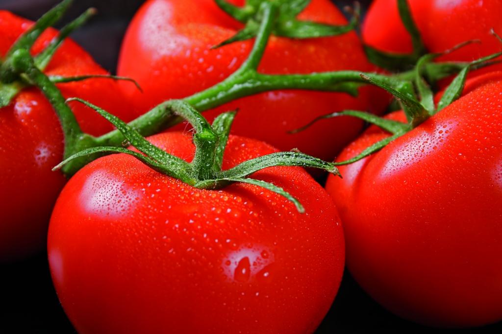 tarımda klordioksit kullanımı